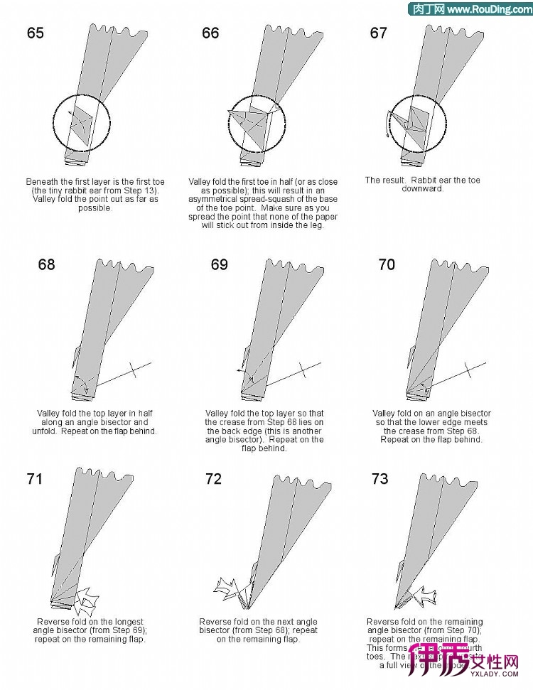 眼框结构与功能图解