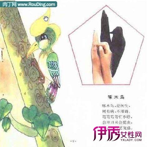 动物手影艺术手把手教你做手影表演