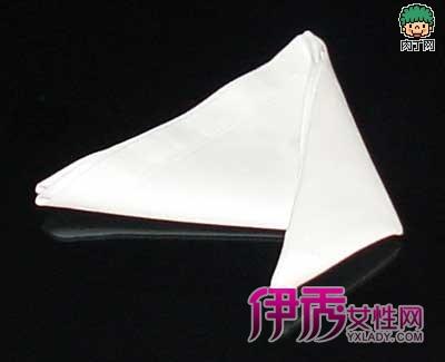 餐巾纸的折叠--天堂鸟