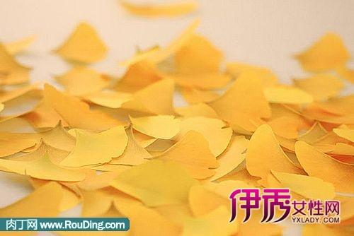 观感与银杏树叶子相仿.
