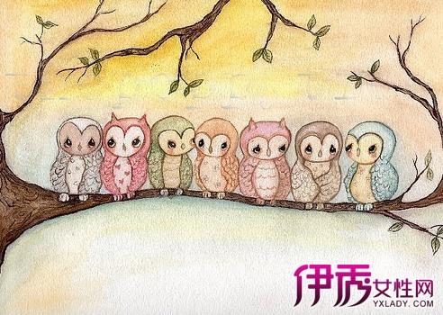 【彩铅手绘猫头鹰】【图】彩铅手绘猫头鹰图片汇总