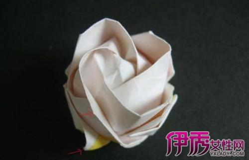 我要画画简单的玫瑰花展示