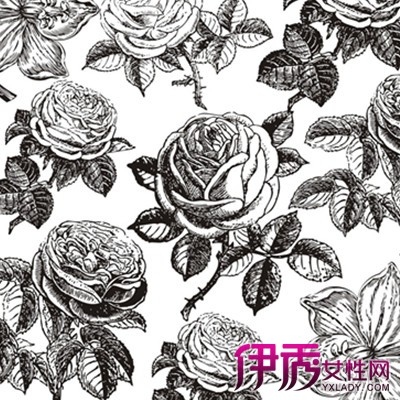 【图】手绘文艺玫瑰图欣赏
