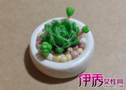 【图】手工粘土植物教程 谁能抵挡得了手工粘土植物的魅力?