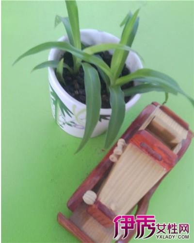 【图】用网线做吊兰花盆 4步骤教你怎么用网线做吊兰