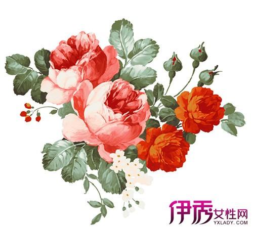 【图】水粉的手绘牡丹花丛欣赏
