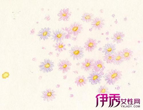 【彩铅花卉步骤图】【图】彩铅花卉步骤图