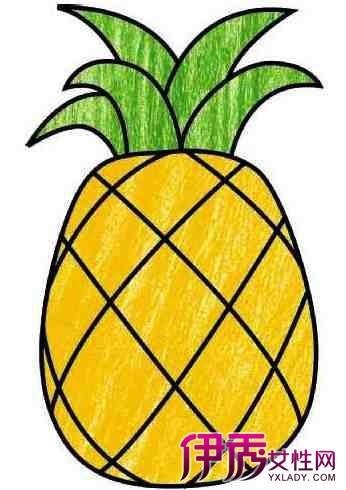 【水果图片简笔画彩图】【图】水果图片简笔画彩图
