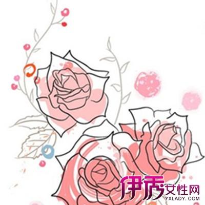 【图】简单的手绘花边图 花边分类起源历史大揭密