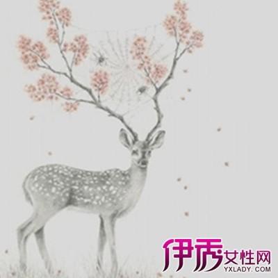 森系手绘图片鹿和女生【相关词_文艺清新复古森系女生
