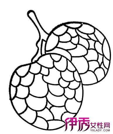 水果蔬菜简笔画 水果荔枝简笔画