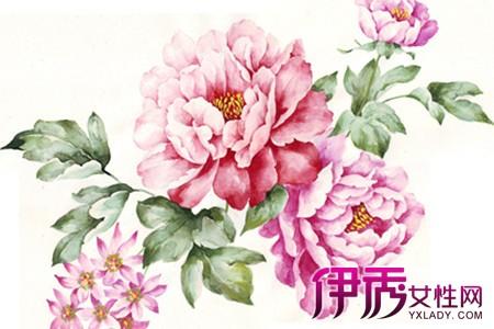 【图】花卉手绘图片欣赏 教你两种素描方法画出栩栩如生的花朵