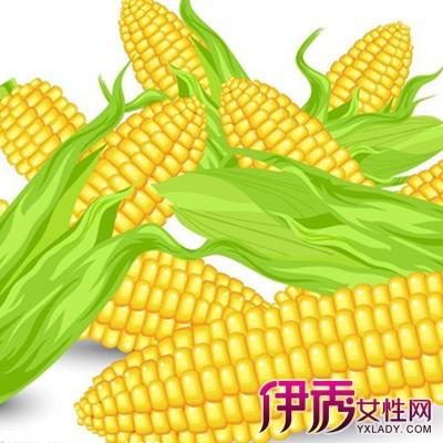 【图】手绘玉米示例图片鉴赏 为你解释手绘的艺术价值