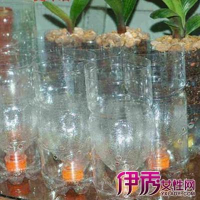 【矿泉水瓶子废物利用】【图】矿泉水瓶子废物利用