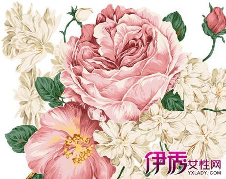 【彩铅手绘小清新花朵】【图】彩铅手绘小清新花朵