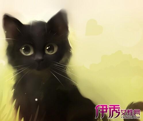 【图】可爱手绘猫图片欣赏 马克笔的手绘作画步骤及基本技法