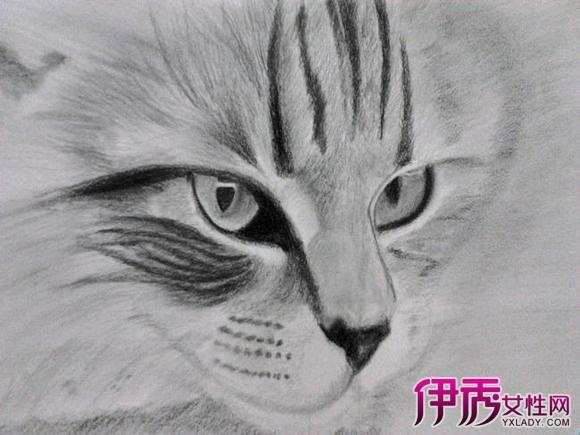 【图】手绘铅笔q版萌人物方法 几个小技巧不得不知