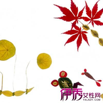 幼儿园中班美术:树叶粘贴画ppt课件