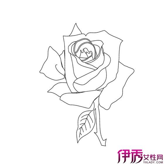 葵花简笔画大全可爱