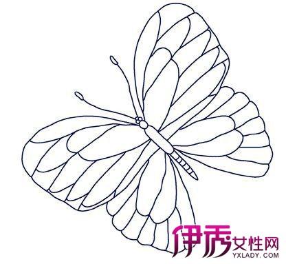 【图】电脑手绘蝴蝶展示 揭秘电脑绘画的技法及cg创作的领域