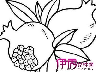 【植物简笔画图片大全】【图】儿童植物简笔画图片