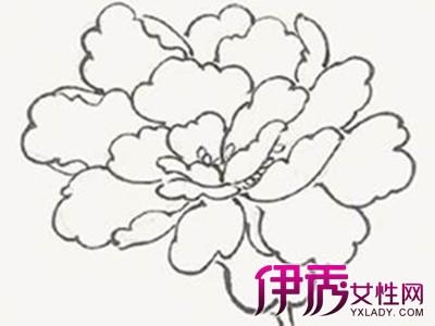 儿童画小花朵简笔画,植物简笔画图片大全