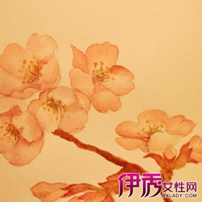 【图】日本手绘彩铅插画花图片欣赏 手绘的几个技巧介绍