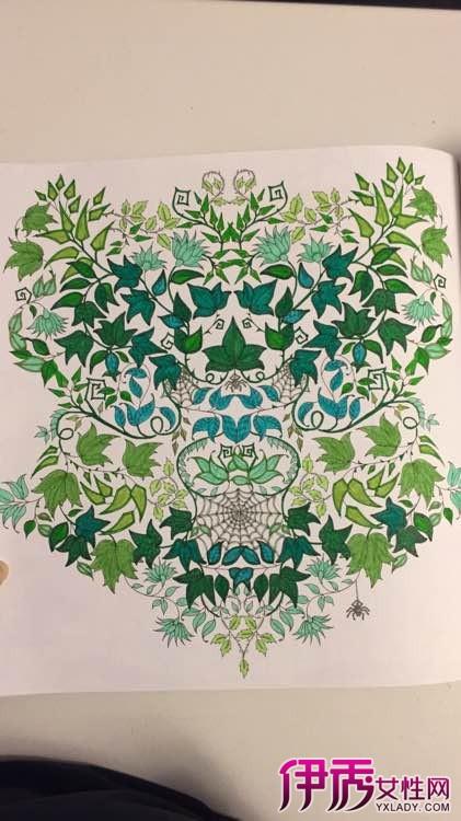【图】秘密花园手绘图图片 创意画集