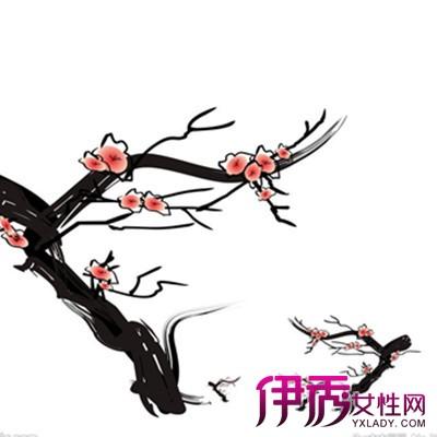 【手绘梅花】【图】分享手绘梅花图片