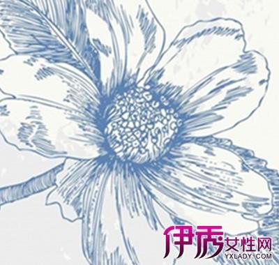 【彩铅手绘教程】【图】彩铅手绘教程之花朵