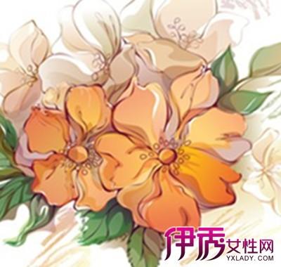 【图】彩铅手绘教程之花朵 轻松学会画画