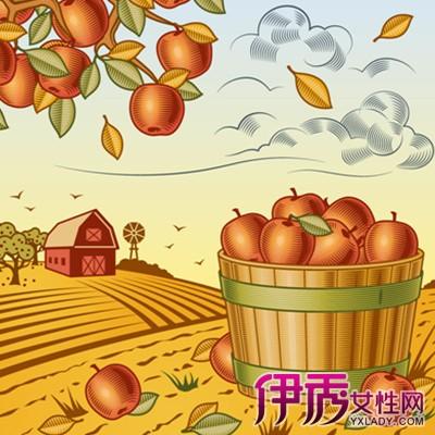 【图】秋天果实丰收的绘画图片展示 要学好会画必须要懂得理论基础