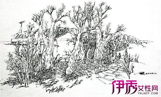 手绘黑白画线描风景介绍 理性与艺术的结合