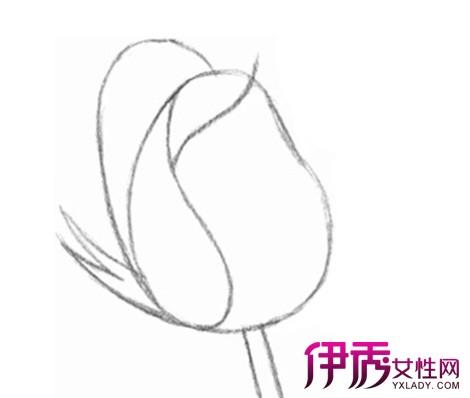 【图】玫瑰花的画法有哪些 特选两种经典技法教你轻松学会