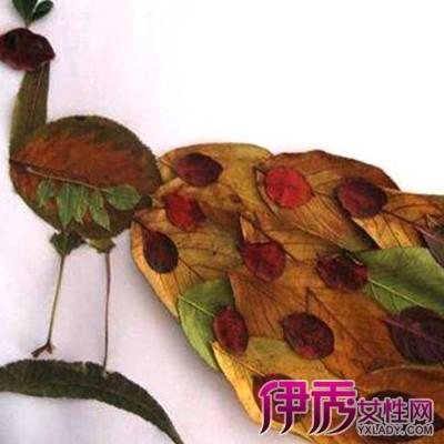 【图】展示树叶贴画作品孔雀图片 几个拼贴技巧介绍