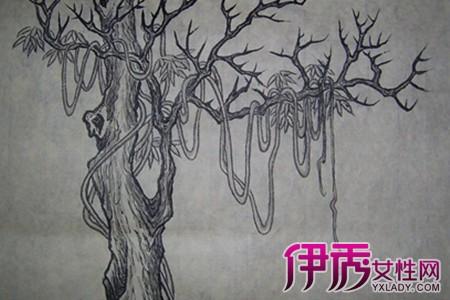 树藤的边框儿童画