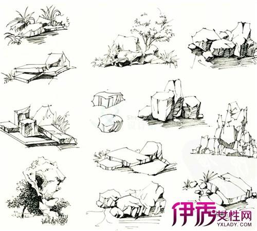 石头花纹简笔画