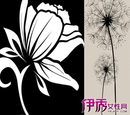【手绘花卉黑白装饰画】【图】手绘花卉黑白装饰画