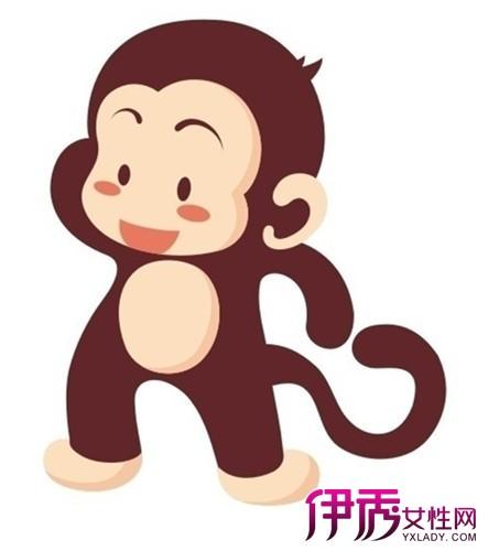 【呆萌猴子卡通图片】【图】呆萌猴子卡通图片