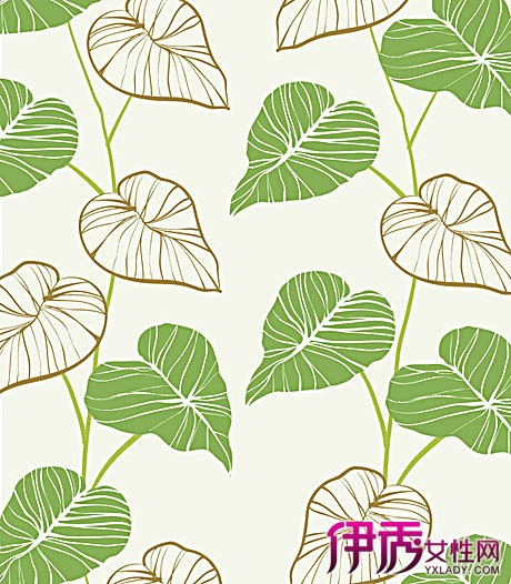 【手绘叶子】【图】如何手绘叶子