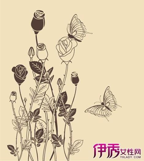 【图】铅笔手绘花怎么画? 掌握三步学习步骤