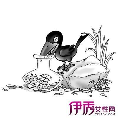 【乌鸦喝水简笔画】【图】分享乌鸦喝水简笔画