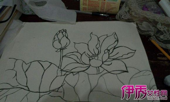 【图】简单手绘荷花铅笔画 详解手绘荷花教程