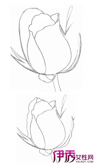 【玫瑰花的画法步骤】【图】玫瑰花的画法步骤