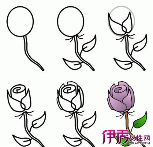 【图】玫瑰花简笔画图片大全 为你介绍怎样简笔画玫瑰花好看