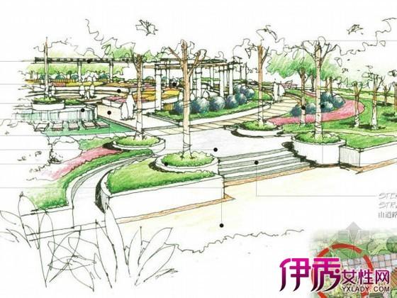 【图】庭院景观设计手绘平面图欣赏 教你如何做出一个好的设计
