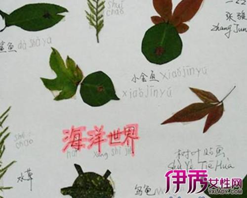 树叶剪贴画 海底世界展示