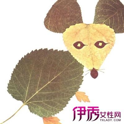 【图】欣赏优秀树叶贴画
