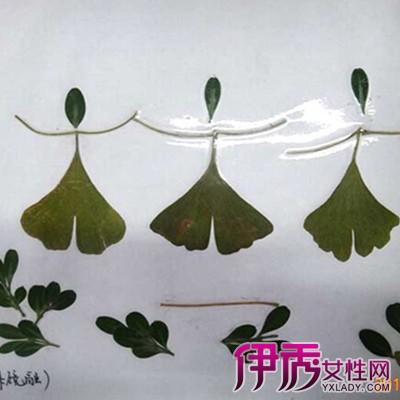 简单的树叶粘贴画欣赏 三个步骤让你轻松做出精美树叶粘贴画
