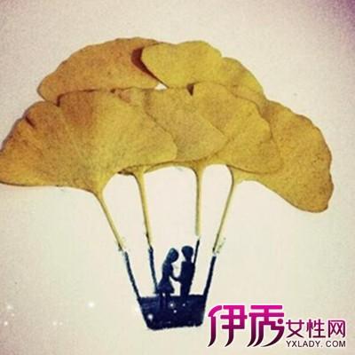 【银杏树叶贴画】【图】银杏树叶贴画图片展示